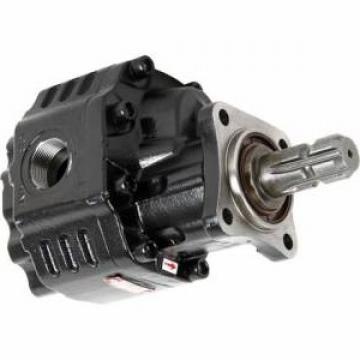 Pompa Idraulica Per Massey Ferguson 362 365 375 390 390T 398 Trattori