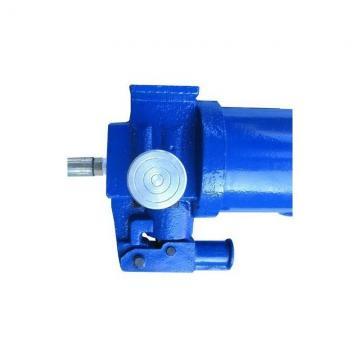 Pompa Idraulica Per New Holland TS90 TS100 TS110 TS115 Trattori