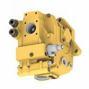 Genuine New PARKER/JCB TWIN POMPA IDRAULICA 332/F9032 MADE IN EU